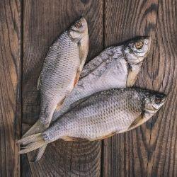 colageno en las escamas de pescado
